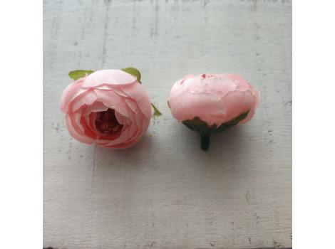 Пион бутон персиково-розовый