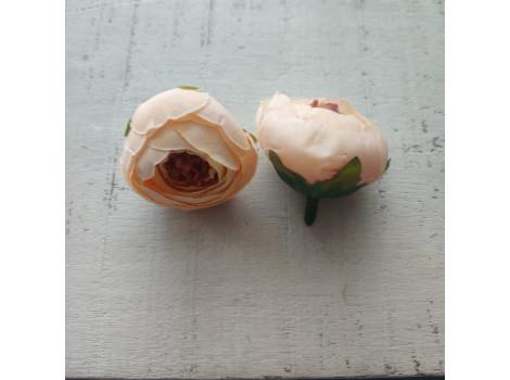 Пион бутон персиковый