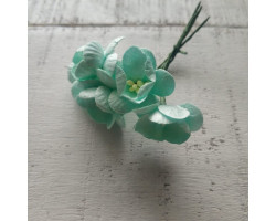 Цветочек вишни средний мятный
