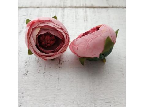 Пион бутон розовый