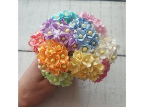 Цветочки вишня средние микс Пастель 50шт